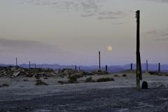Salton Sea 025