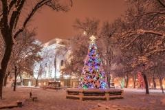 Prescott-Christmas-06