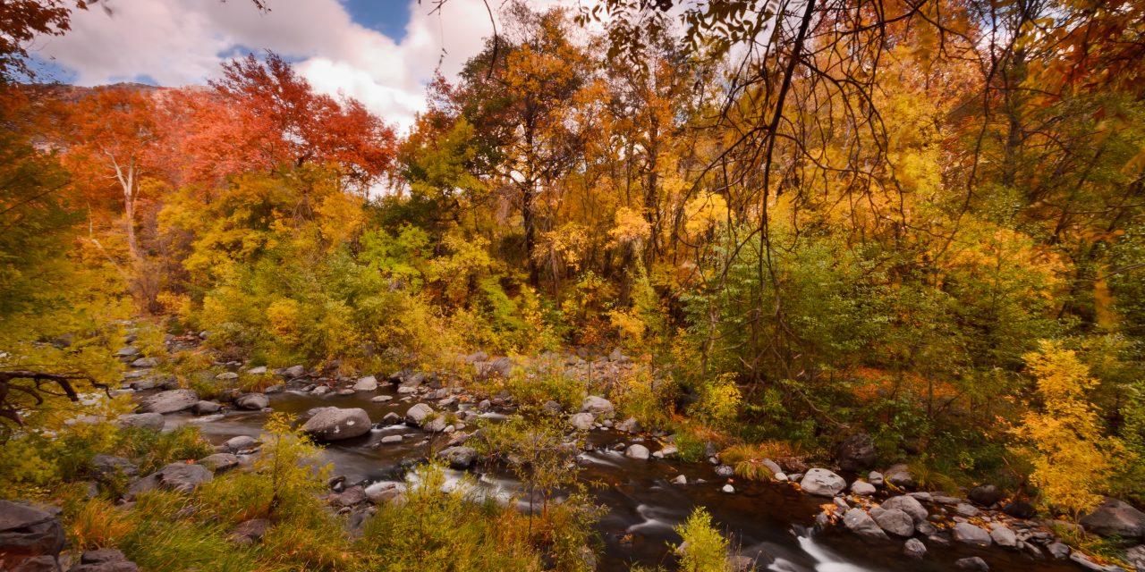 Autumn at Oak Creek