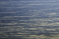 Lake Lida 2012 pic 082