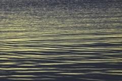 Lake Lida 2012 pic 092