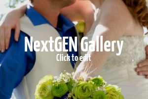 wedding-photography-14-nggid03107-ngg0dyn-300x200x90-00f0w010c011r110f110r010t03jpg